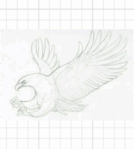 drawing a bird - how to draw a bird