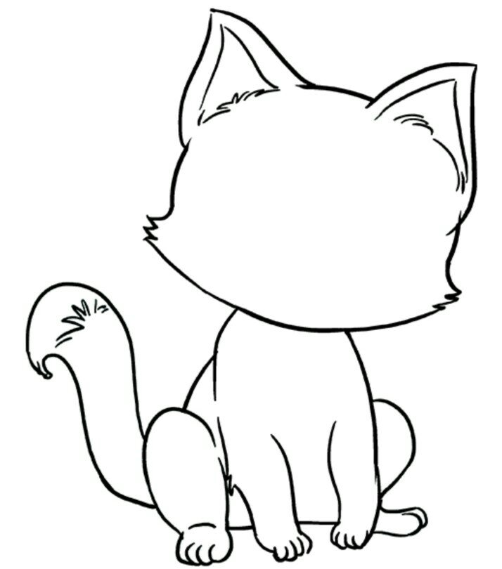 Learn how to draw cat face