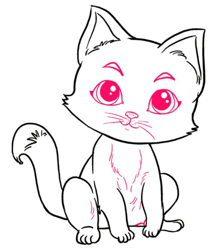 The last step drawing a cat