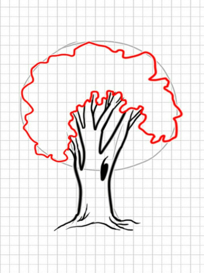 How to draw a tree easy step 5