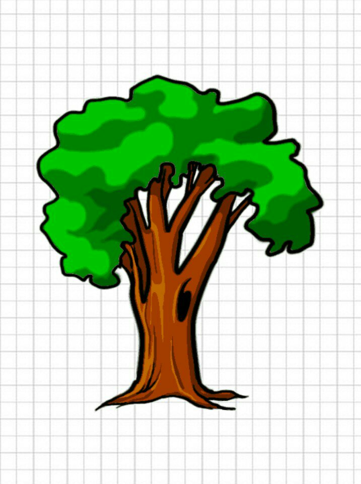 The last step in drawing a tree