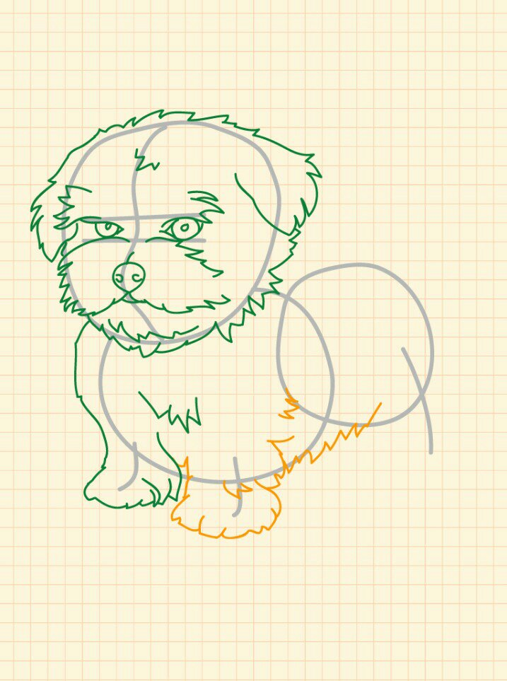 how to draw a puppy step by step easy