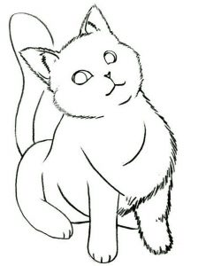 How to draw a cat legs