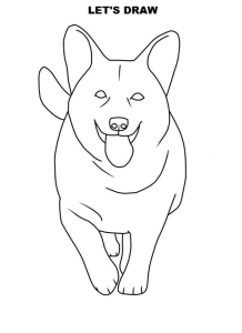 How to draw a dog realistic