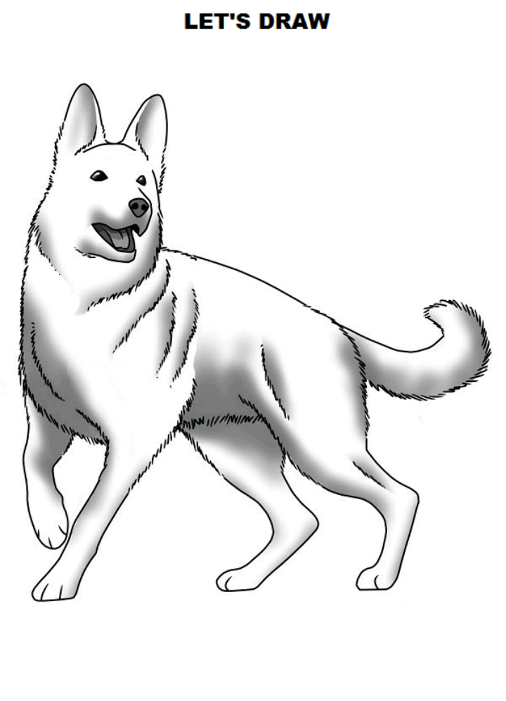 How To Draw A Dog Realistic But Easy 100 Anime Drawn