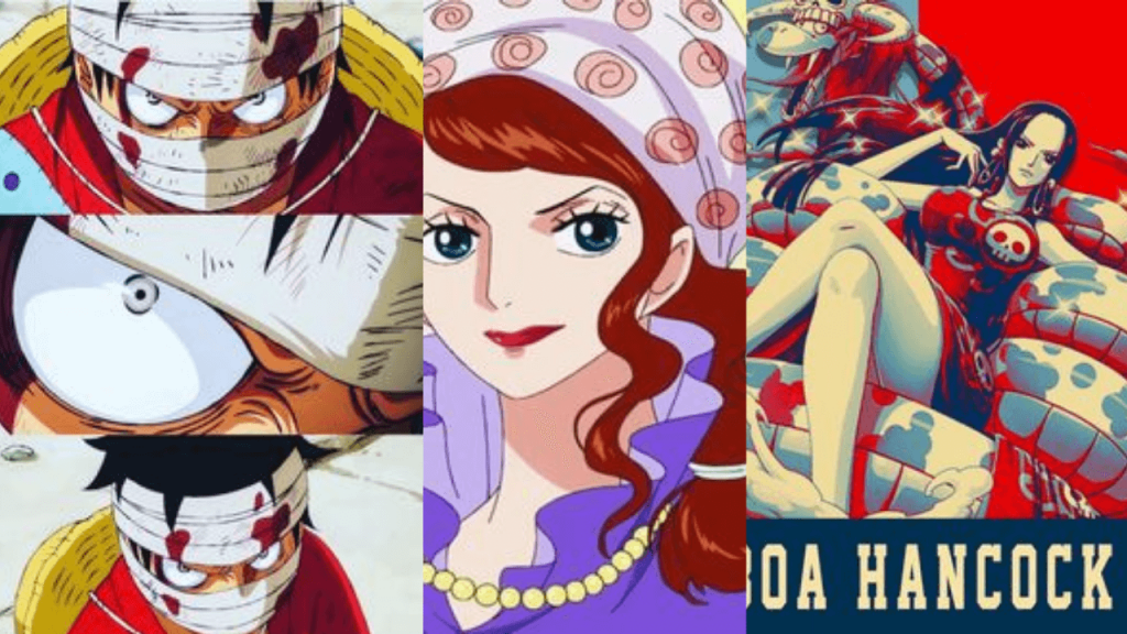 Who's Luffy's mom | One Piece